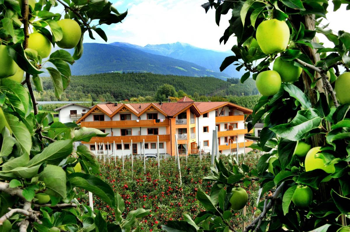 Youth hotel Sonnenhof – your group accommodation in South Tyrol